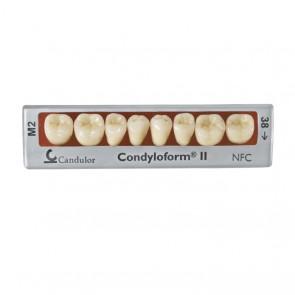 Candulor Condyloform II NFC+