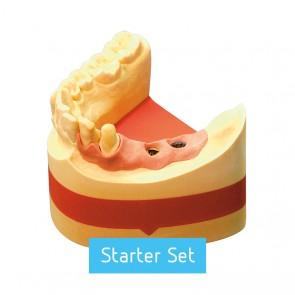 Picodent Majesthetik Gingiimplant Starter Set