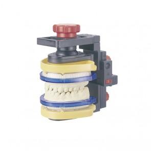 Modeltray Intercuspidator Richtsockel